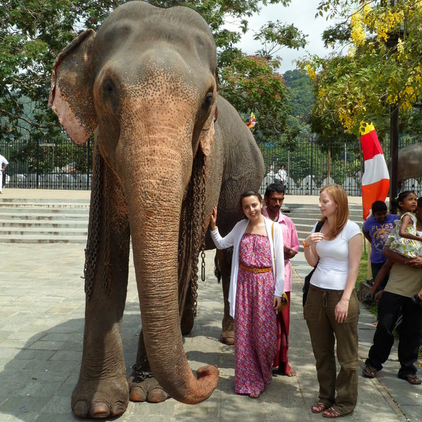 Renna's Review of her Dental Elective in Sri Lanka